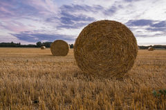 A haybale after the harvest at dusk time Stock Image