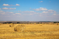 Haybale landscape Stock Photo