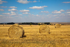 Haybale landscape Stock Photos