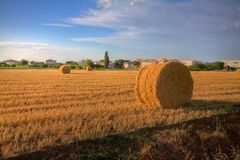Haybale no por do sol Fotos de Stock Royalty Free
