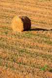 Haybale at the sunset Royalty Free Stock Images