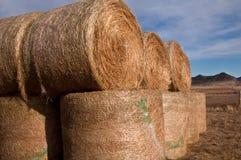 haybales Fotografering för Bildbyråer