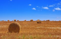 Haybales #2 Royalty Free Stock Photography