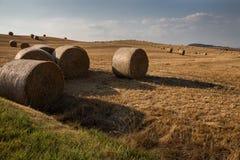 Haybales auf einem Hügel lizenzfreie stockfotografie