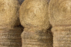 Haybales closeup Royalty Free Stock Photos