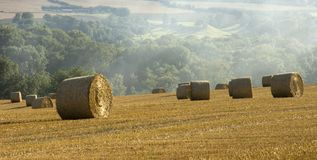Haybales cornfield agricultural landscape Stock Photography