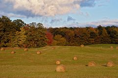 Haybales in Field Royalty Free Stock Photos