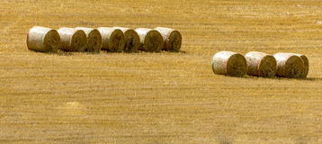 Haybales isolated in a corn field Stock Images