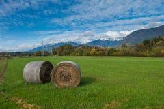 Haybales no campo no outono Imagens de Stock