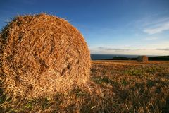 Haybales nr Prawle Point Devon Royalty Free Stock Photos