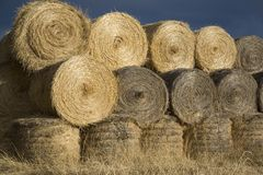 Haybales in soft autumn evenign light Stock Photo