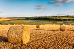 Haybales at Wadebridge Stock Images
