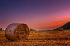 Hayballs Fotografia de Stock