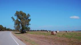 Hayballs på gräset i bygden av Oklahoma stock video