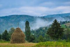 Haycock in Borsa, Maramures, Romania Stock Image