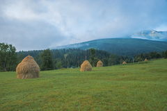 Haycock in Borsa, Maramures, Romania Royalty Free Stock Images