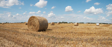 Free Haycock. End Of Summer Royalty Free Stock Images - 6151549