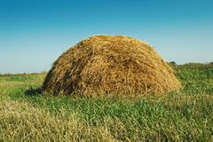 Haycock. Field of agricultural land. royalty free stock photo