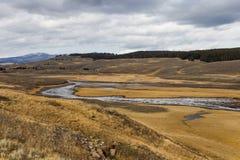 Hayden dolina w Yellowstone Obraz Stock