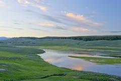 hayden nationalparkdalen yellowstone Royaltyfria Bilder