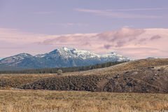 Hayden Valley Landscape. The scenic landscape of the Hayden valley in Yellowstone national park Royalty Free Stock Photo