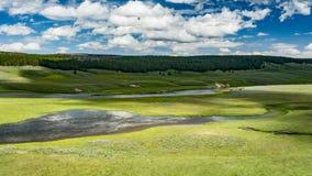 Hayden Valley in Yellowstone Royalty Free Stock Photos