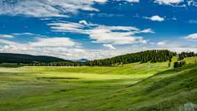 Hayden Valley. In Yellowstone National Park in Wyoming Stock Image