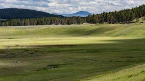 Hayden Valley, Yellowstone Stock Photo