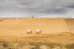 Hayfield в осени Стоковое Изображение RF