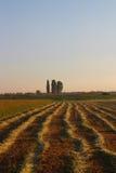 hayfield Image libre de droits