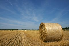 Hayfield and bales Royalty Free Stock Photos