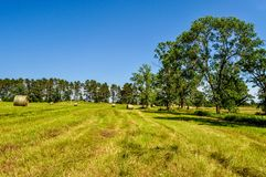 A Hayfield in Central Minnesota. This hayfield was freshly cut and bailed a small farm in Central Minnesota royalty free stock image