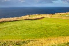 Hayfield dichtbij de kust van de Atlantische Oceaan, de Azoren, Portugal Stock Afbeelding