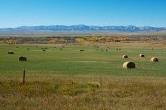 Hayfield e montanhas rochosas Fotos de Stock