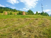 Bevelled hay and haystacks on a mountain slope. Hayfield on a mountain slope with bevelled hay and haystacks in the Carpathian Mountains stock photo