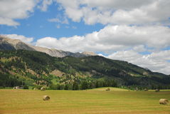 Hayfield Mountains. Montana hay field with bales and mountain range stock photography