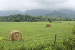 Hayfield Near The Smoky Mountains Royalty Free Stock Photography