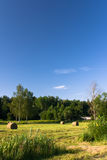 Hayfield onder blauwe hemel Royalty-vrije Stock Foto's