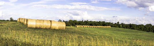 Hayfield panorama. Panorama of an Ohio hayfield on a summer day Royalty Free Stock Photography
