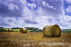 Hayfield. Before rain in county Waterford, Ireland Stock Photography