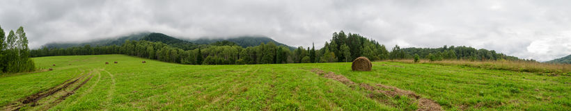 Hayfield under the mountain. Panorama of hayfield under the foggy mountain Royalty Free Stock Image