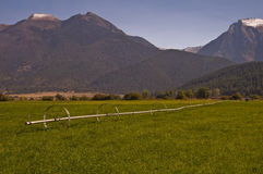 Hayfields and mountans Royalty Free Stock Photography
