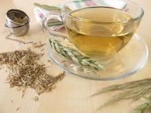 Hayflower tea Stock Photos