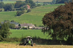 Haying Belgian farmer in meadow, Belgium Royalty Free Stock Images