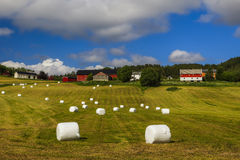 Haying in the field. Picturesque rural landscape. Norway Royalty Free Stock Image
