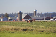 Haying Field in Washington State Royalty Free Stock Images
