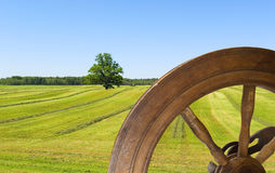Haying and retro wheel. Stock Photography