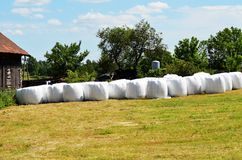 Haylage Royalty Free Stock Image