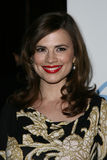 Hayley Atwell Photographie stock libre de droits