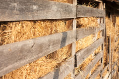 Hayloft. Hay in a wooden barn lit by afternoon sunlight Royalty Free Stock Photo